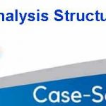 Case Study Analysis Structure
